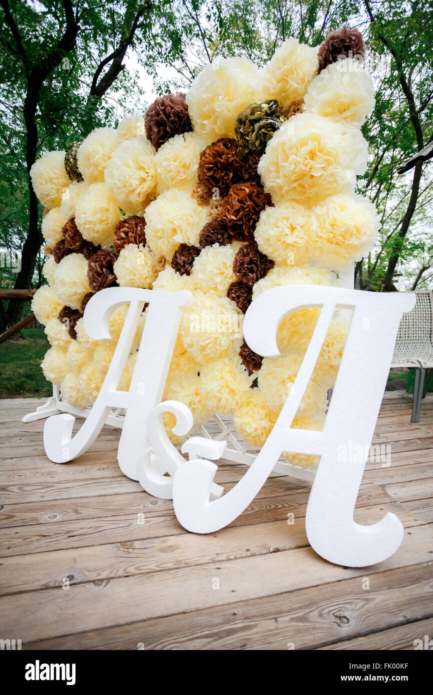 Flower Pompon Backdrop Wall Wedding Decoration Zone With Double