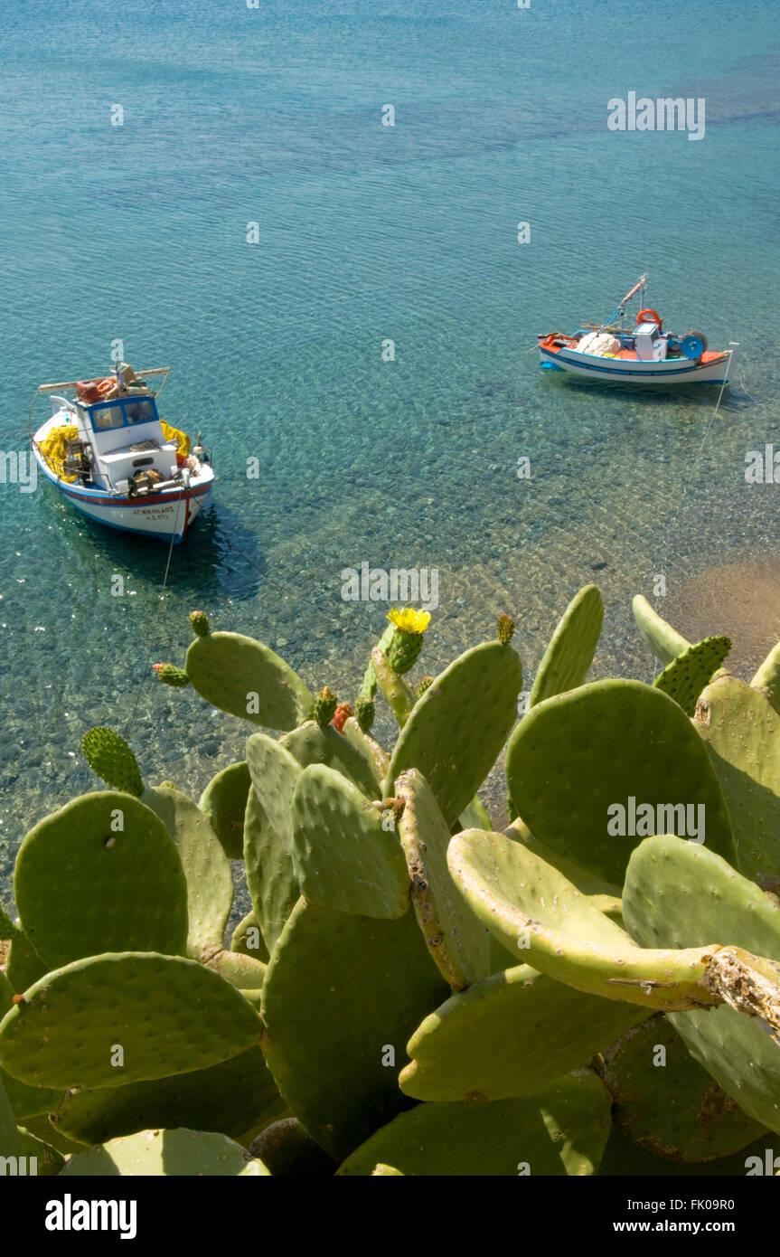 Griechenland, Kreta, Kato Zakros, Fischerboote und blühende Opuntien - Stock Image