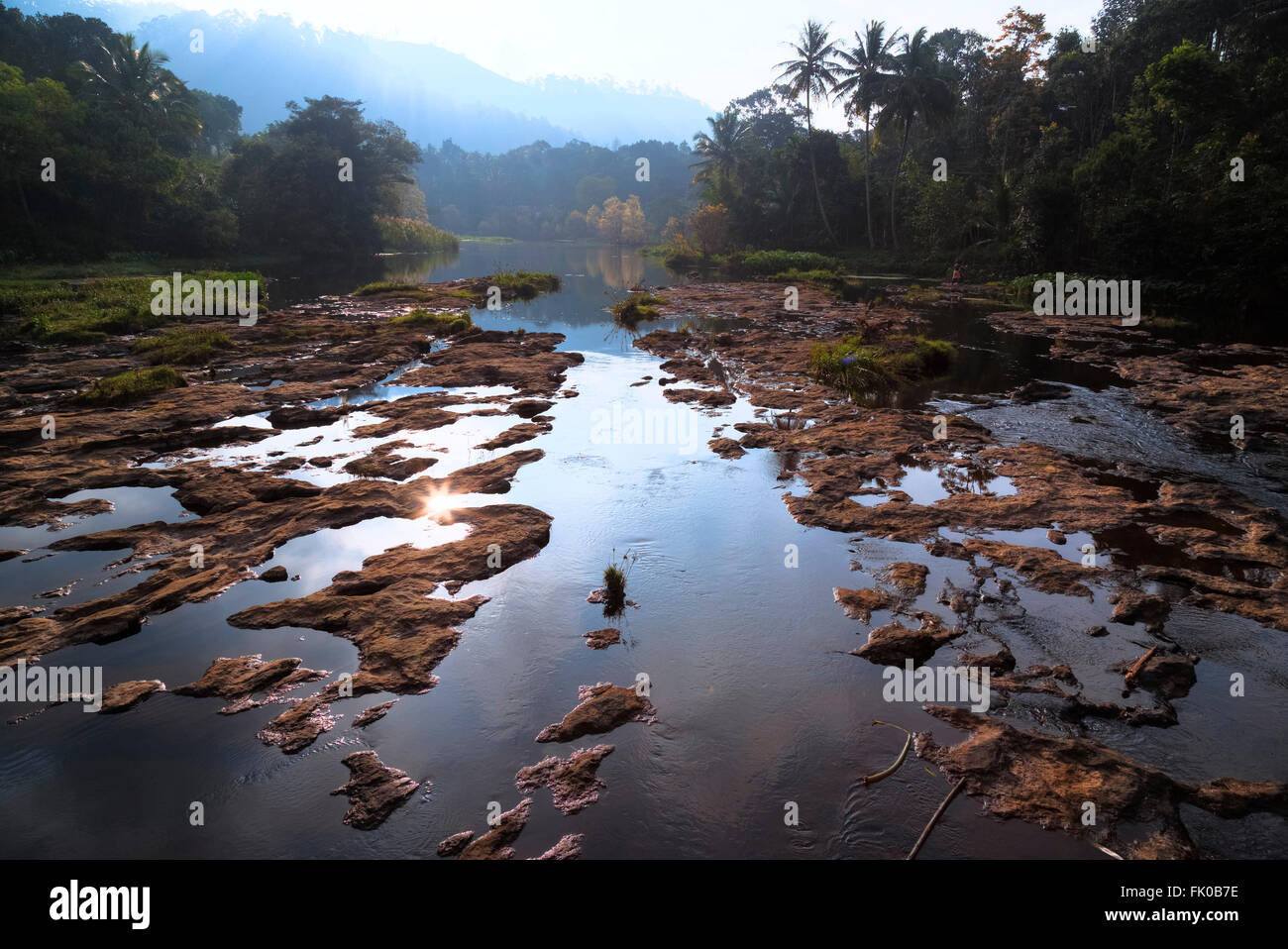 Periyar National Park, Thekkady; Periyar; Kerala; India; - Stock Image