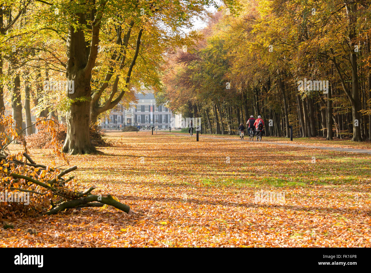 Bicycling people on path towards Groeneveld Castle in Baarn in autumn, Netherlands - Stock Image