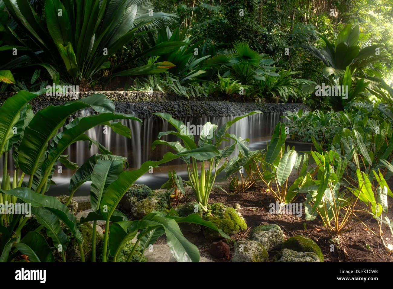Waterfall, Botanic Gardens, SIngapore - Stock Image