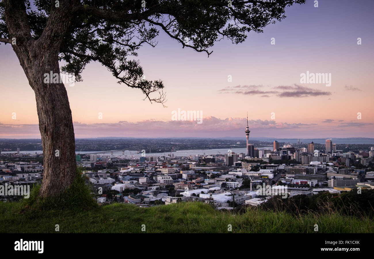 A view Auckland at sunset from the remnant volcano, Mt. Eden. - Stock Image