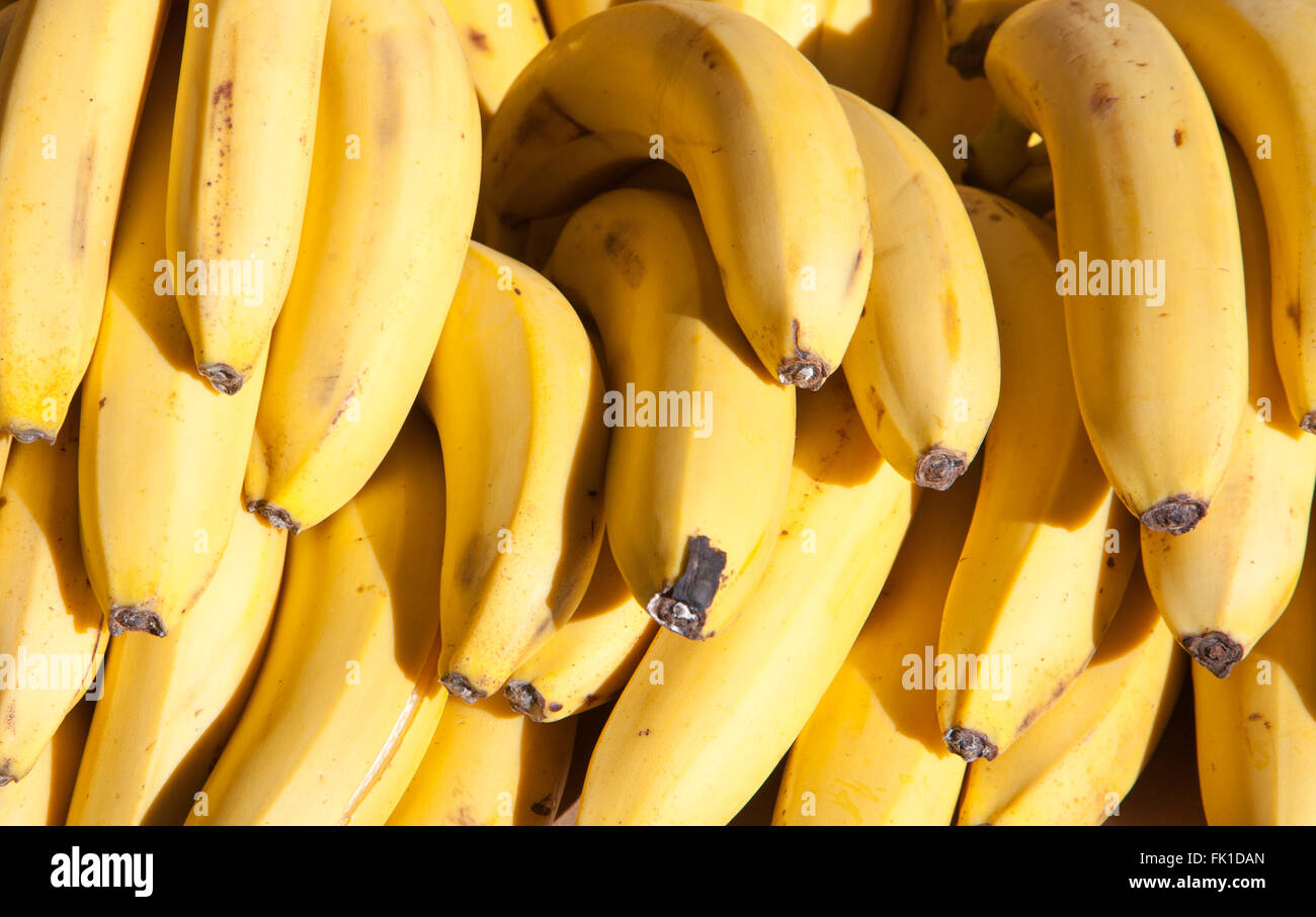 banana fruits - Stock Image