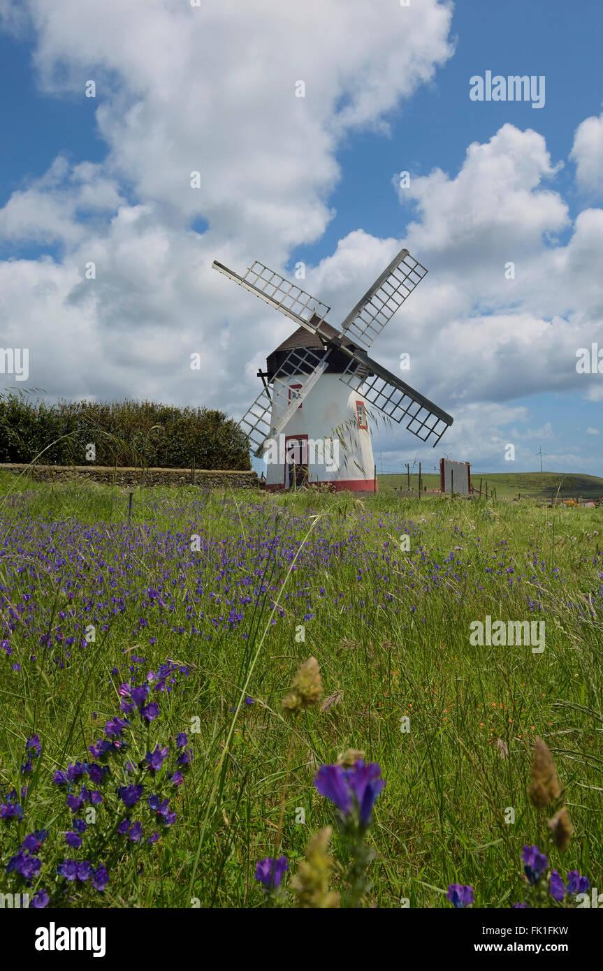 Windmill in Vila do Porto. Santa Maria Island, Azores. Portugal Stock Photo