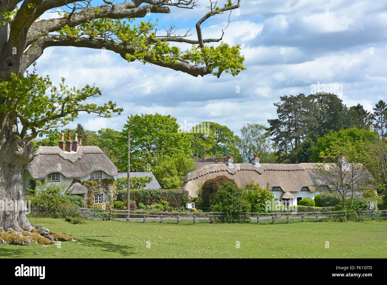 New Forest Lyndhurst Hampshire thatched country cottage Swan Green  countryside in centre of New Forest National - Stock Image