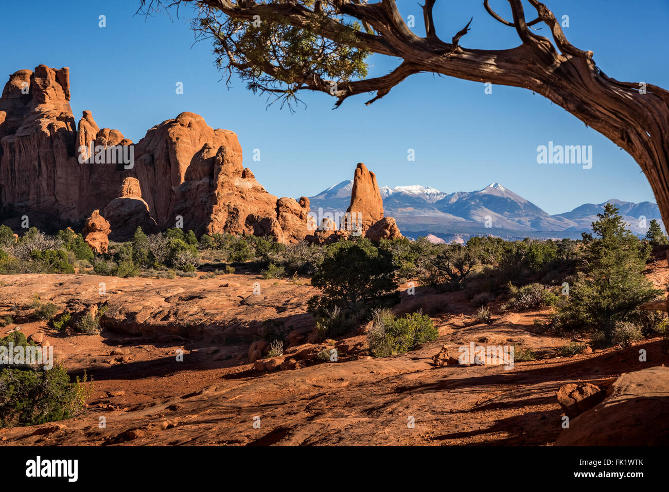 Arches National Park is a landscape of contrasting colors, landforms and textures. - Stock Image
