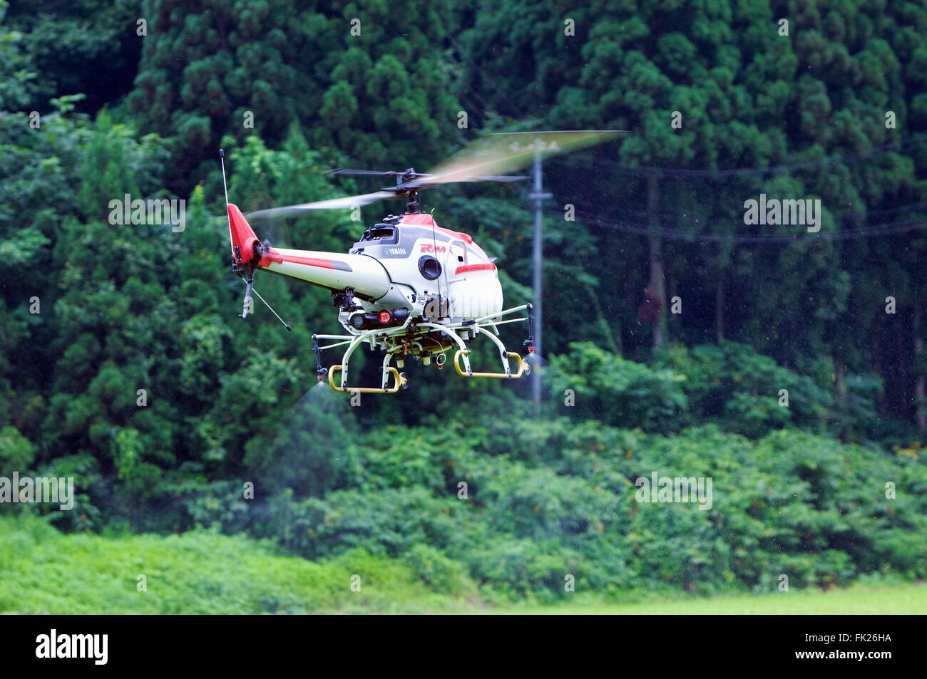 A Yamaha RMax crop spraying drone in action Stock Photo
