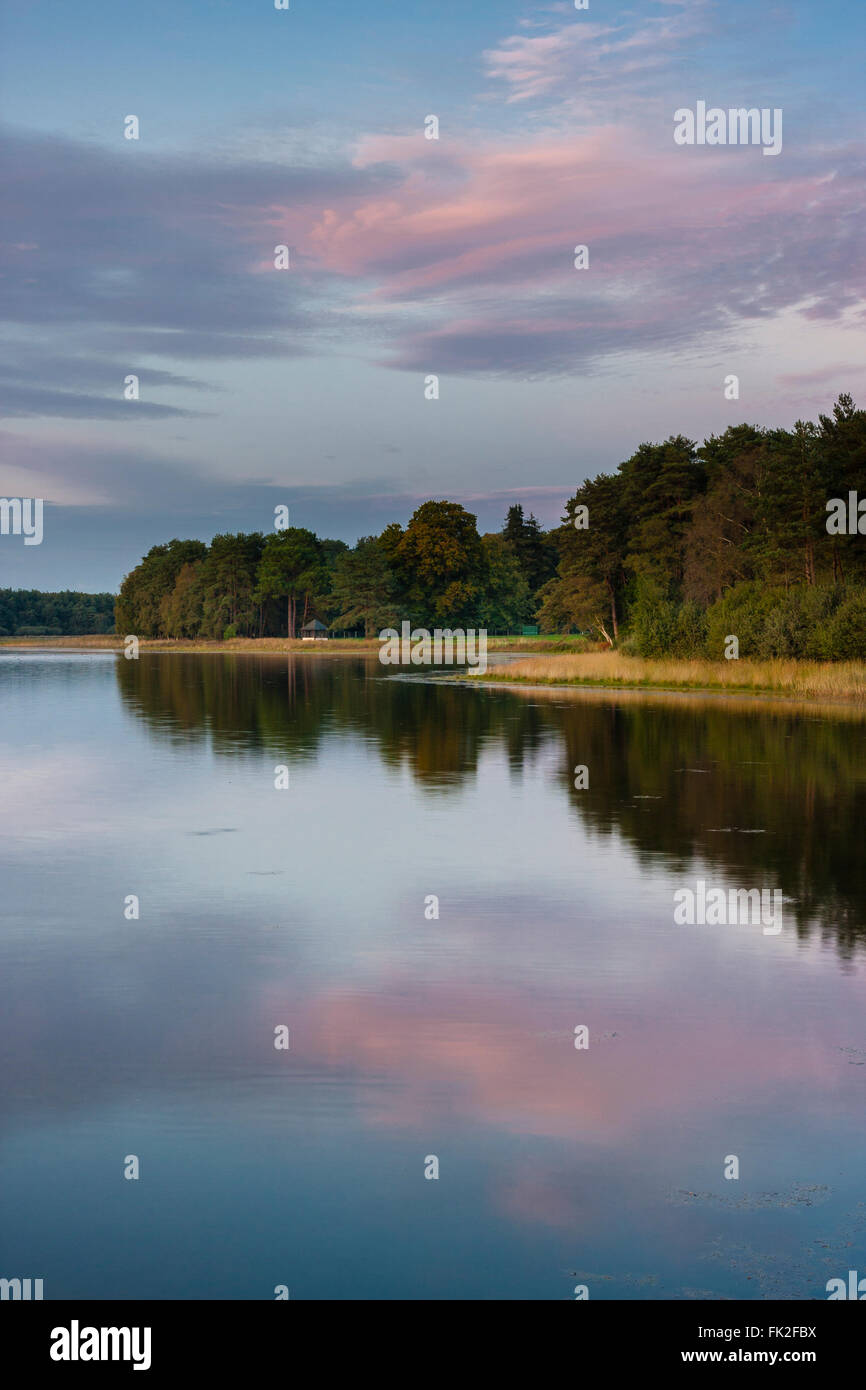 The landscape of the Broceliande forest, near the french city of Rennes, in Brittany, includes some man-made lakes, - Stock Image