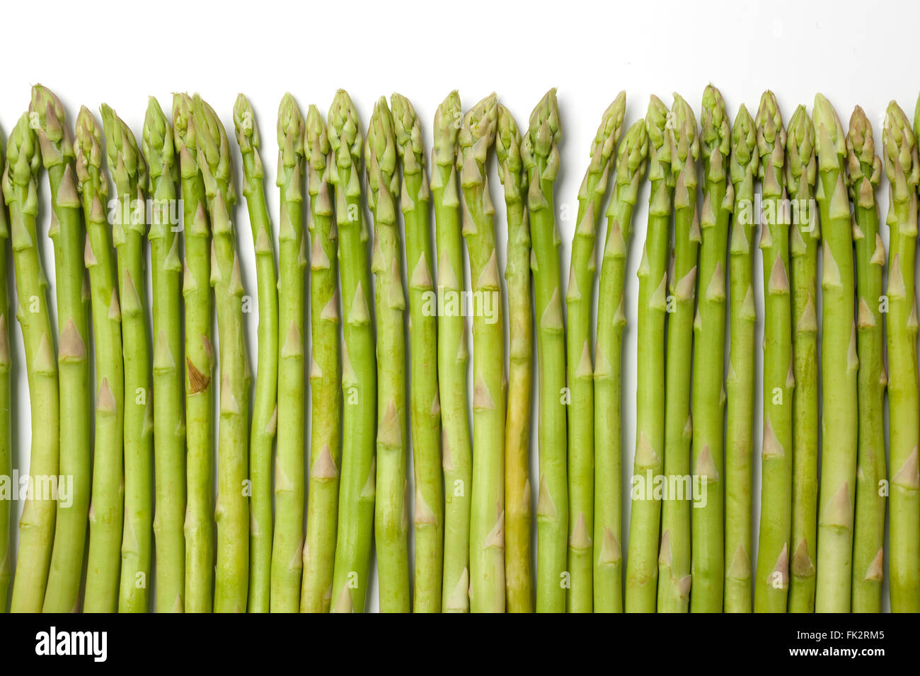 Healthy green fine asparagus tips on a row on white background - Stock Image