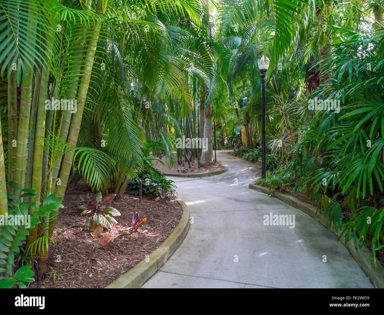 Path in Sunken Gardens in St Petersburg Florida - Stock Image