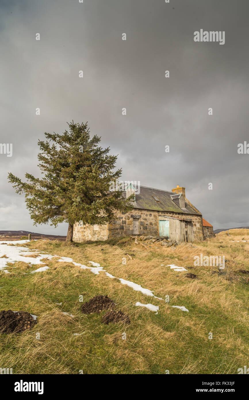 Croft ruins on Dava Moor in Scotland. - Stock Image