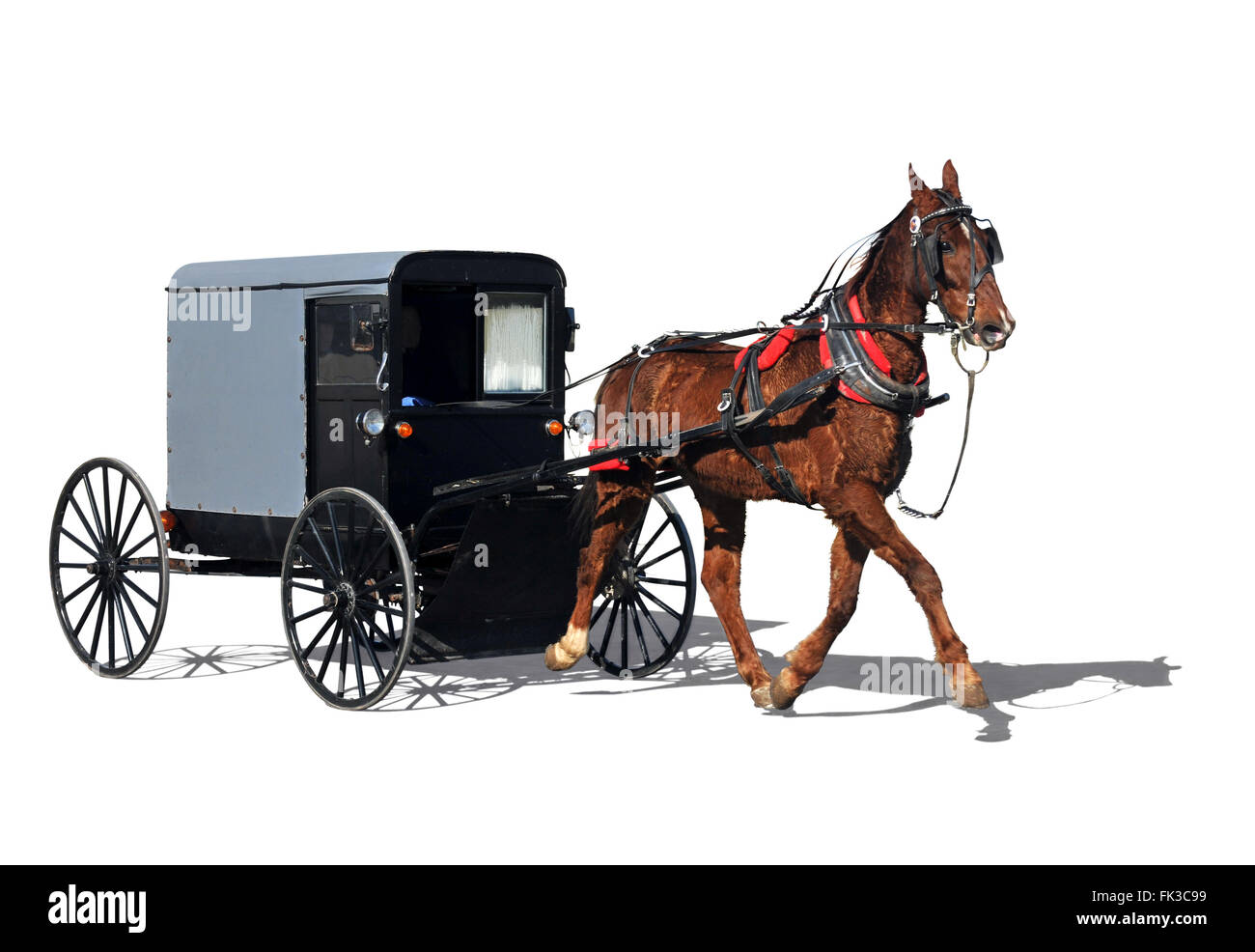 Amish horse-drawn carriage also know as buggy isolated in white - Stock Image