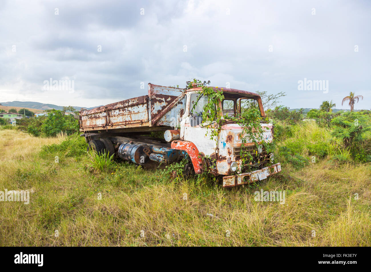 Overgrown Leyland tipper truck in Ogg Spencer's Trucking scrapyard, Liberta, south Antigua, Antigua and Barbuda, - Stock Image