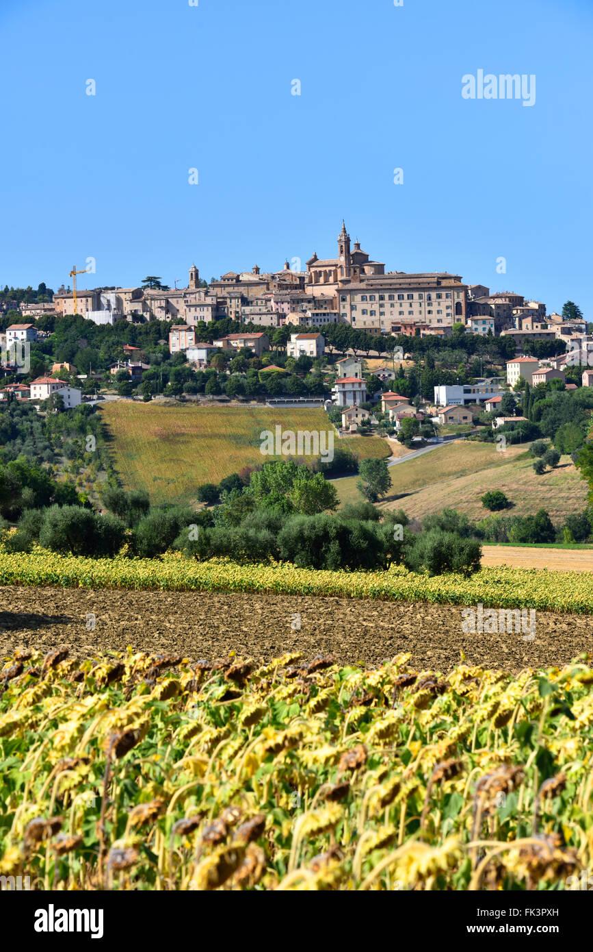 City, Village, Hill, Landscape, View, Green, Trees, Blue Sky, Mondolfo, Ancona, Marken, Italy, Europe - Stock Image
