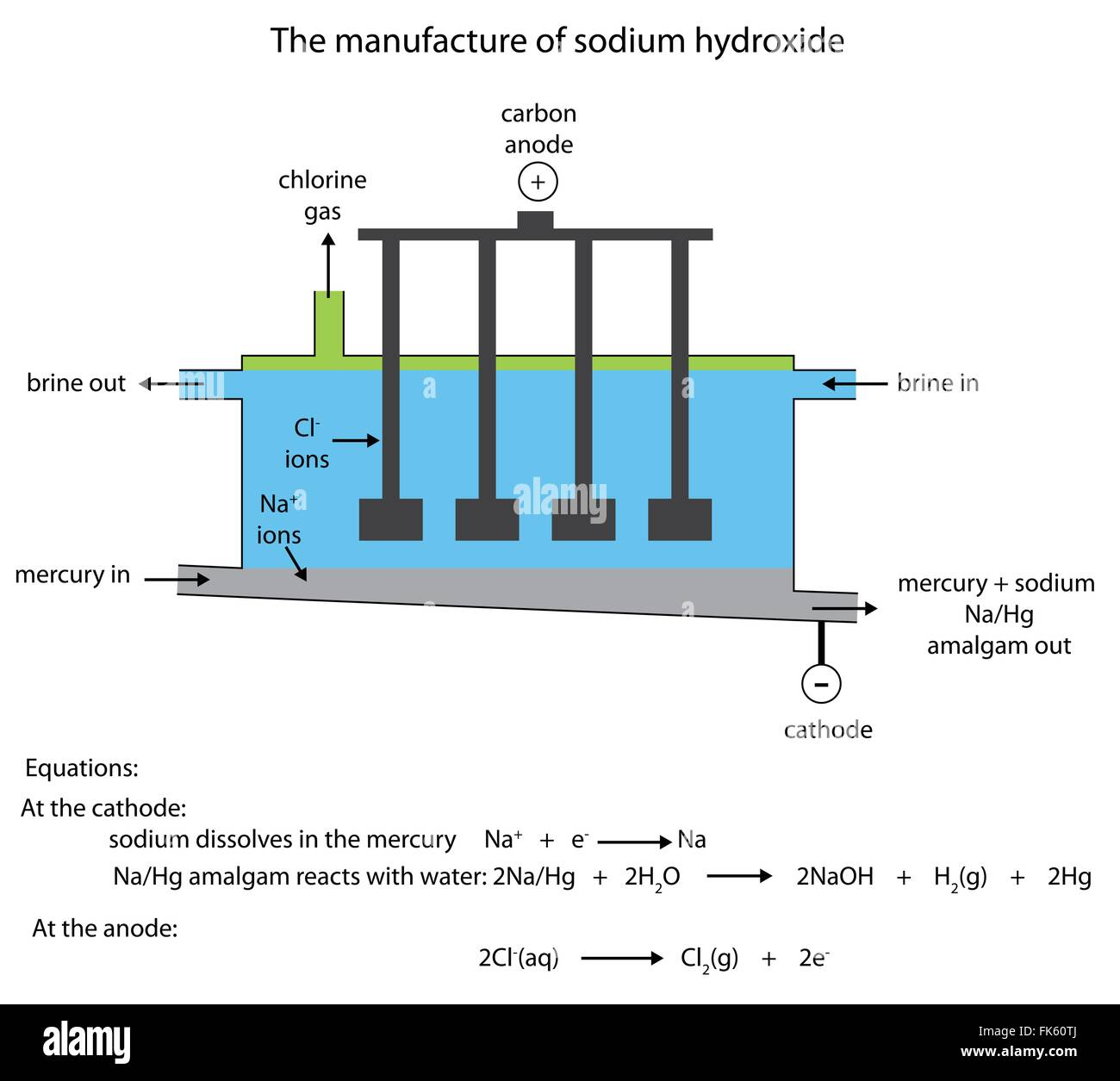 labelled diagram of the industrial manufacture of sodium hydroxide in the  flowing mercury cell in vector