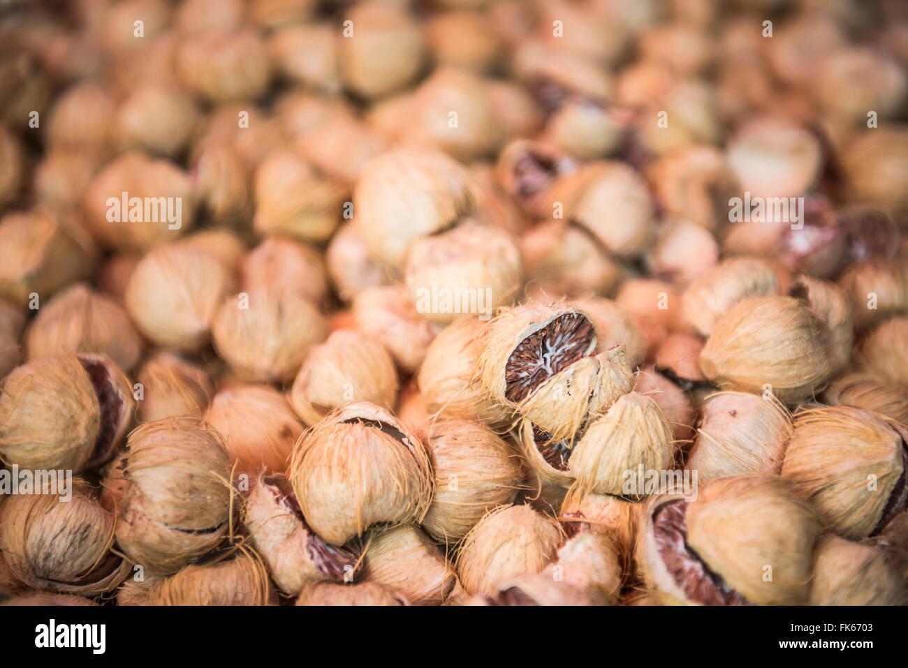 Betel nut (Betel leaf and areca nut), Mrauk U, Rakhine State, Myanmar (Burma), Asia - Stock Image