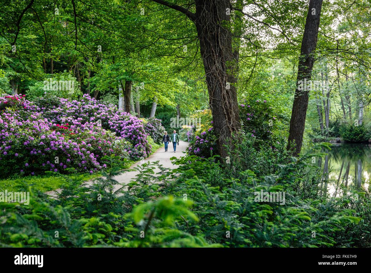 Tiergarten park, Berlin, Germany, Europe - Stock Image