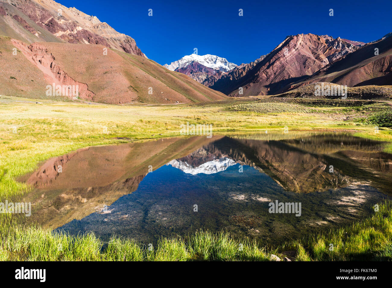 Aconcagua, at 6961m, the highest mountain in the Andes Mountain Range, Aconcagua Provincial Park, Mendoza Province, - Stock Image