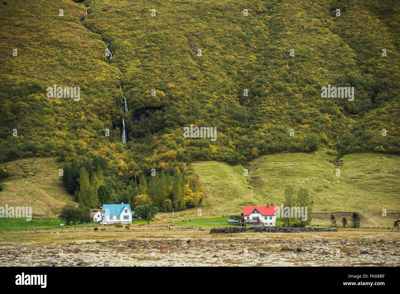 Hamlet near Vik, South Region (Sudurland), Iceland, Polar Regions - Stock Image