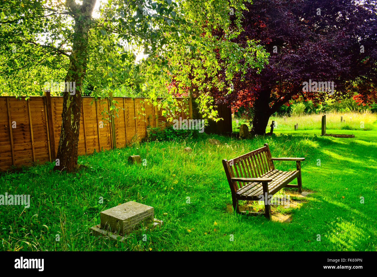 A bench in a park. London, United Kingdom. Stock Photo