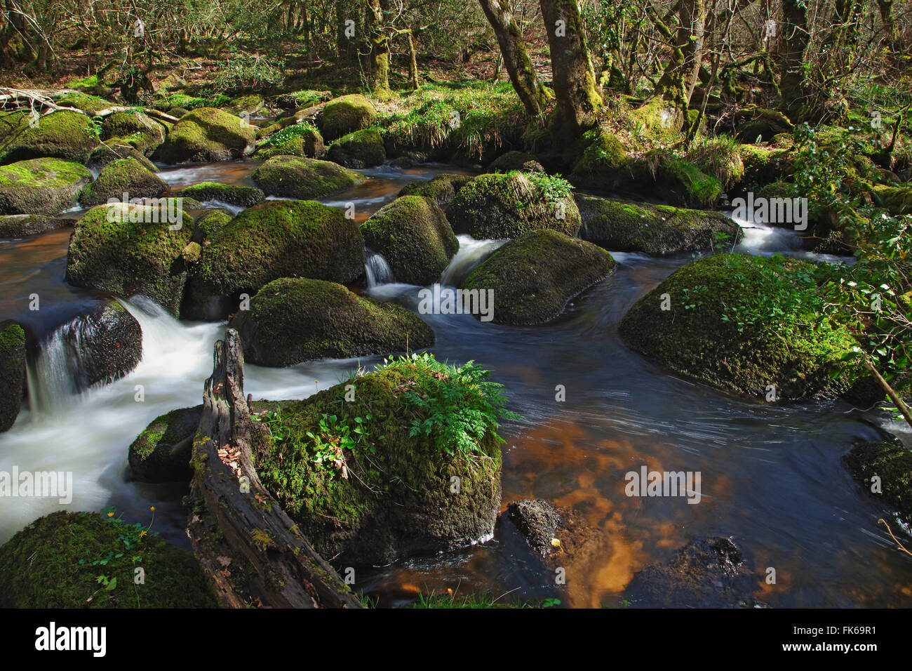 Water flowing around rocks in the Bovey River, Lustleigh Cleave, near Manaton, Dartmoor National Park, Devon, England - Stock Image