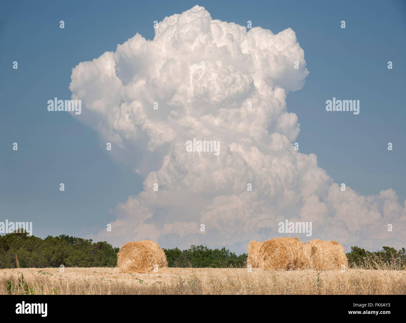 Billowing cloud over a wheat field, France, Europe - Stock Image