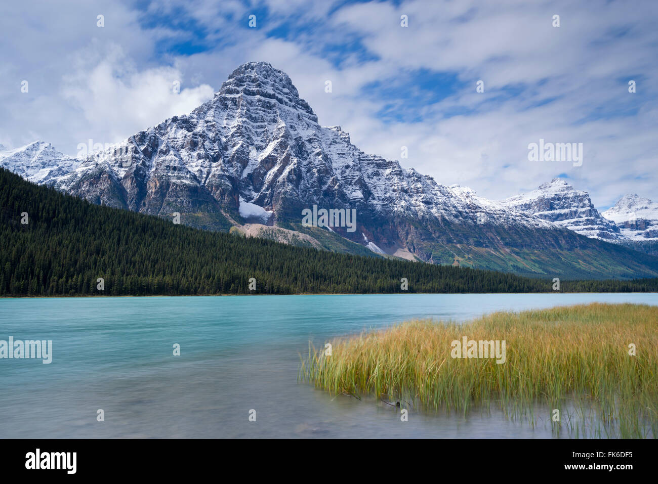 Snow dusted Mount Chephren above Waterfowl Lakes in the Canadian Rockies, Banff National Park, UNESCO, Alberta, - Stock Image