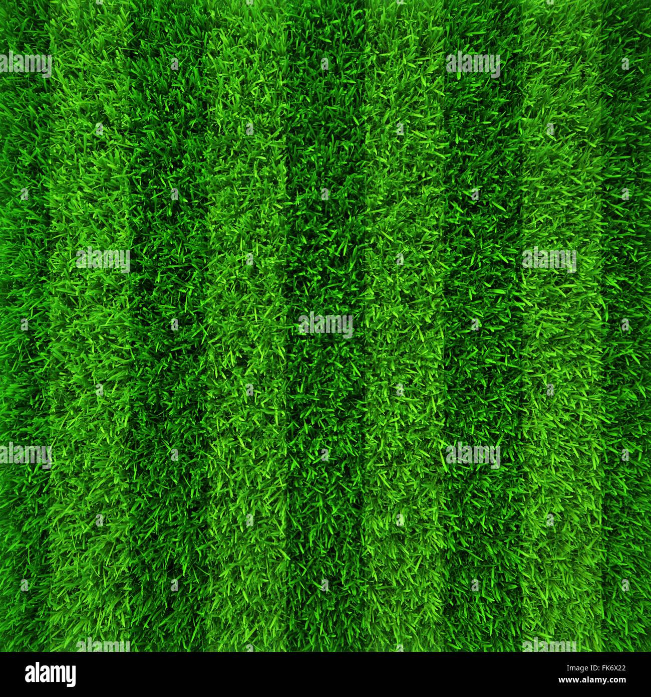 green grass soccer field. Wonderful Field Green Grass Soccer Field Background On Grass Soccer Field