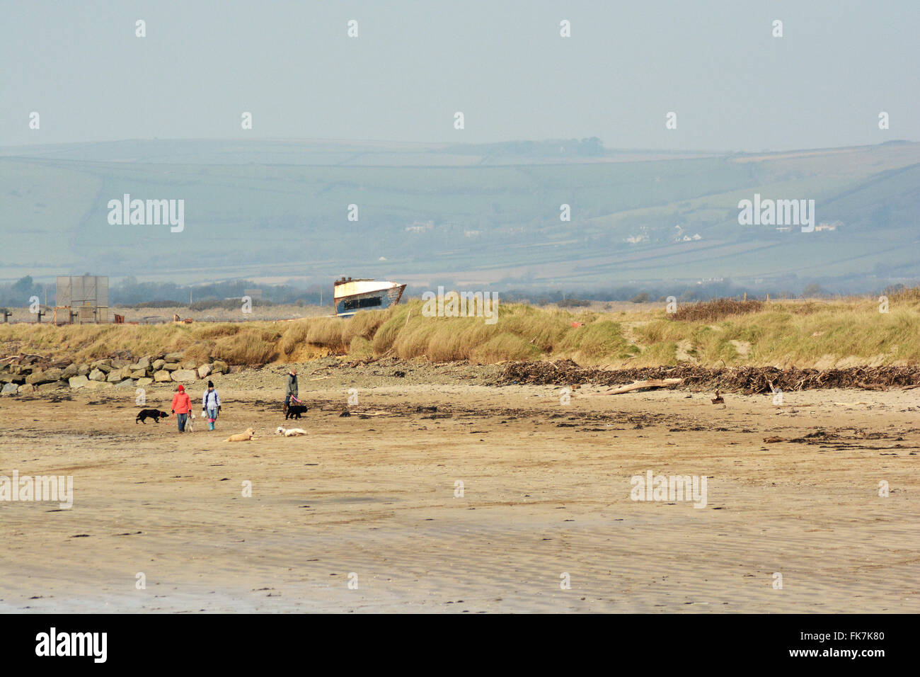 Winter Brisk Beach Walk Dogs Bristol Channel South West Coast Path Sands Tidal Walking Sand Dunes - Stock Image