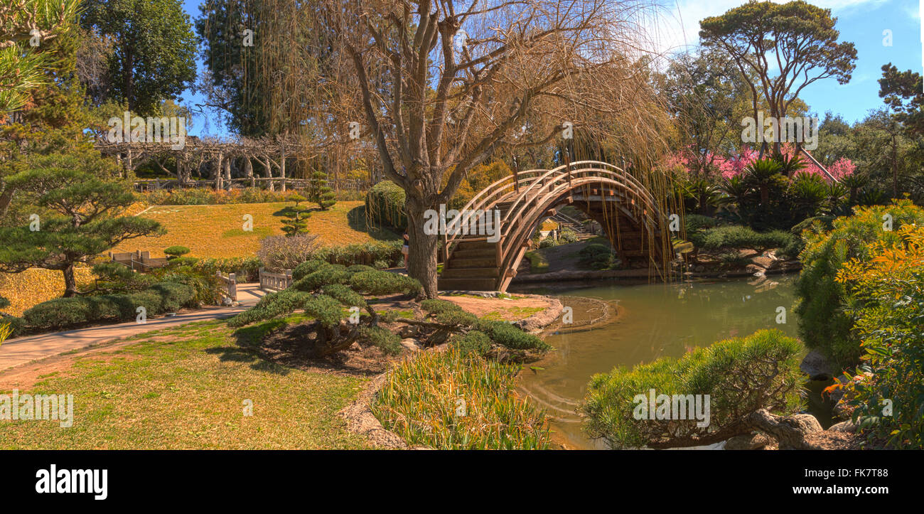 Japanese garden at the Huntington Botanical Garden with a pond and ...