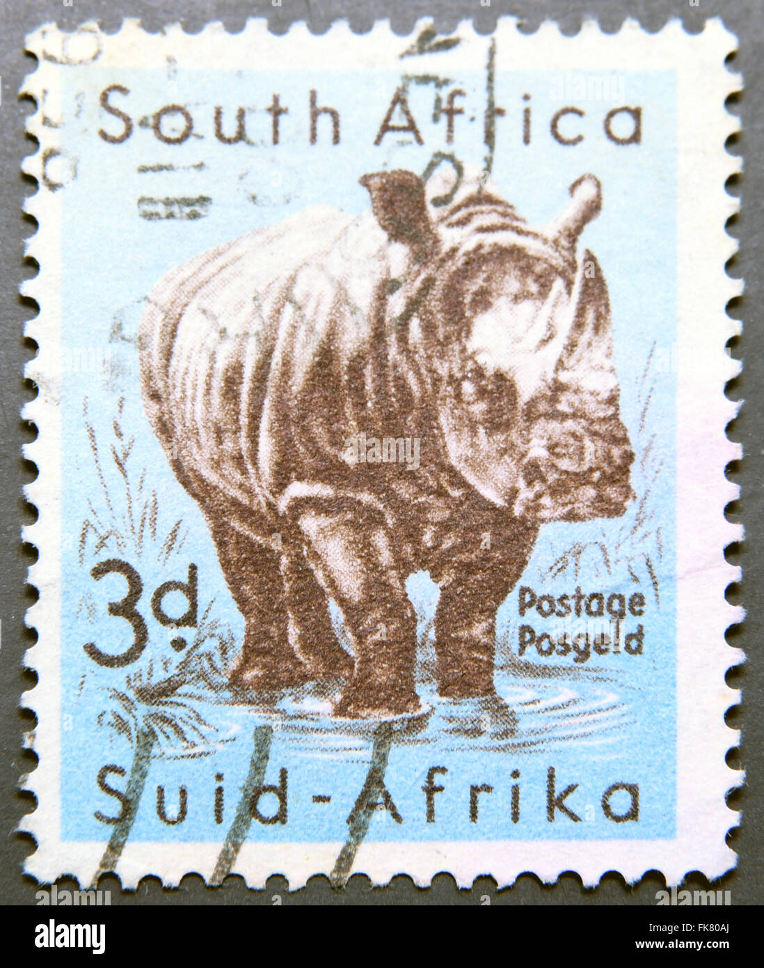 SOUTH AFRICA - CIRCA 1954: A stamp printed in South Africa shows White Rhinoceros , circa 1954 - Stock Image