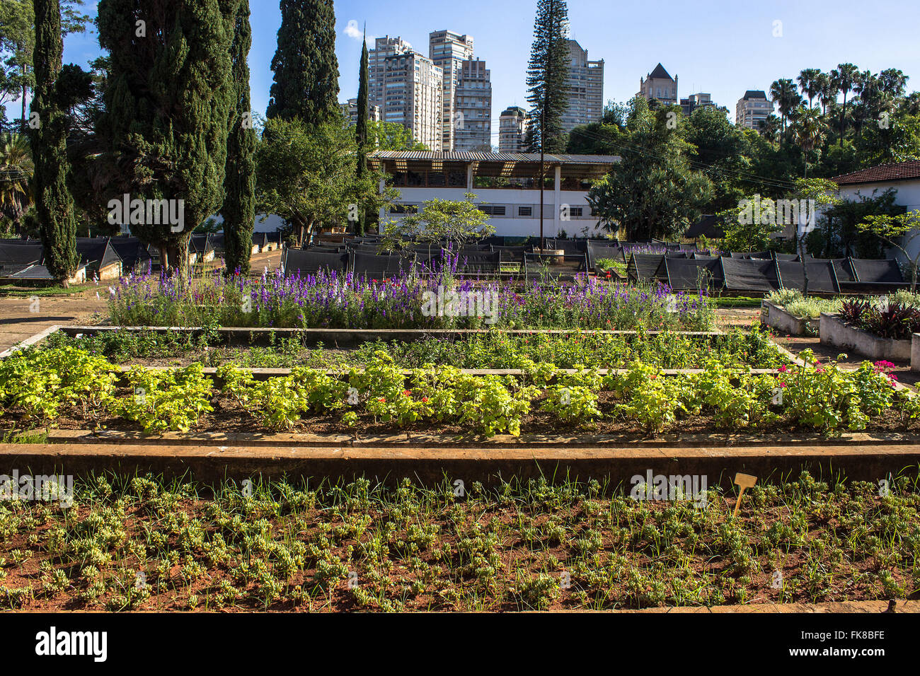 Nursery beds suspended Manequinho Lopes - Ibirapuera Park - Stock Image