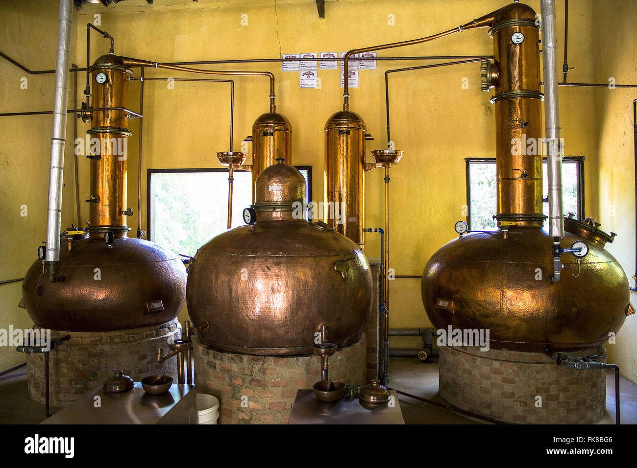 Distillation of cane sugar process for the production of cachaca