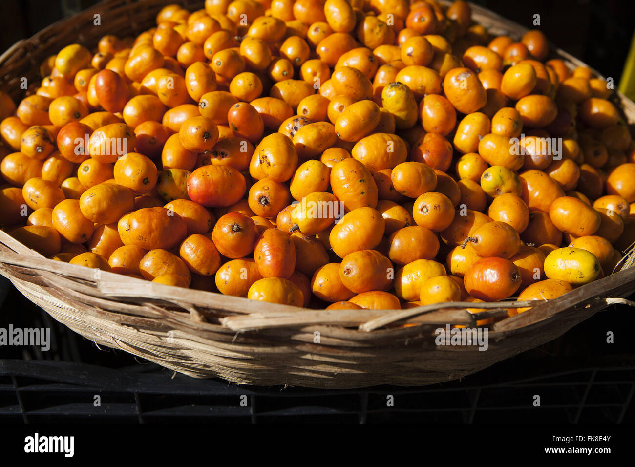 Caja bowl on straw, typical fruit of the northeast - Stock Image