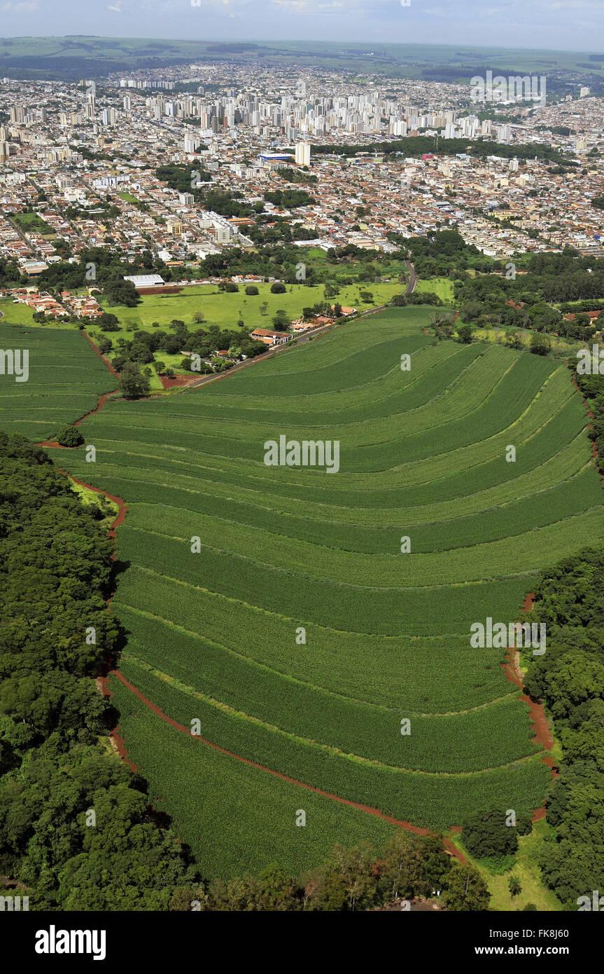 Aerial view of urban advancing on the countryside of Ribeirao Preto - São Paulo - Stock Image