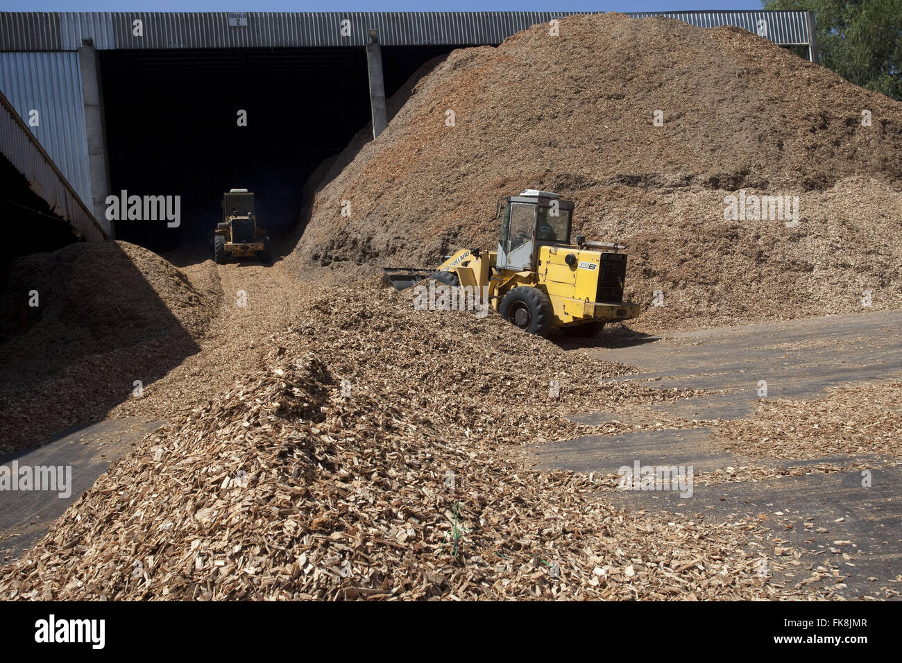 Deposit of plant biomass to electricity cogeneration in cooperative - Stock Image