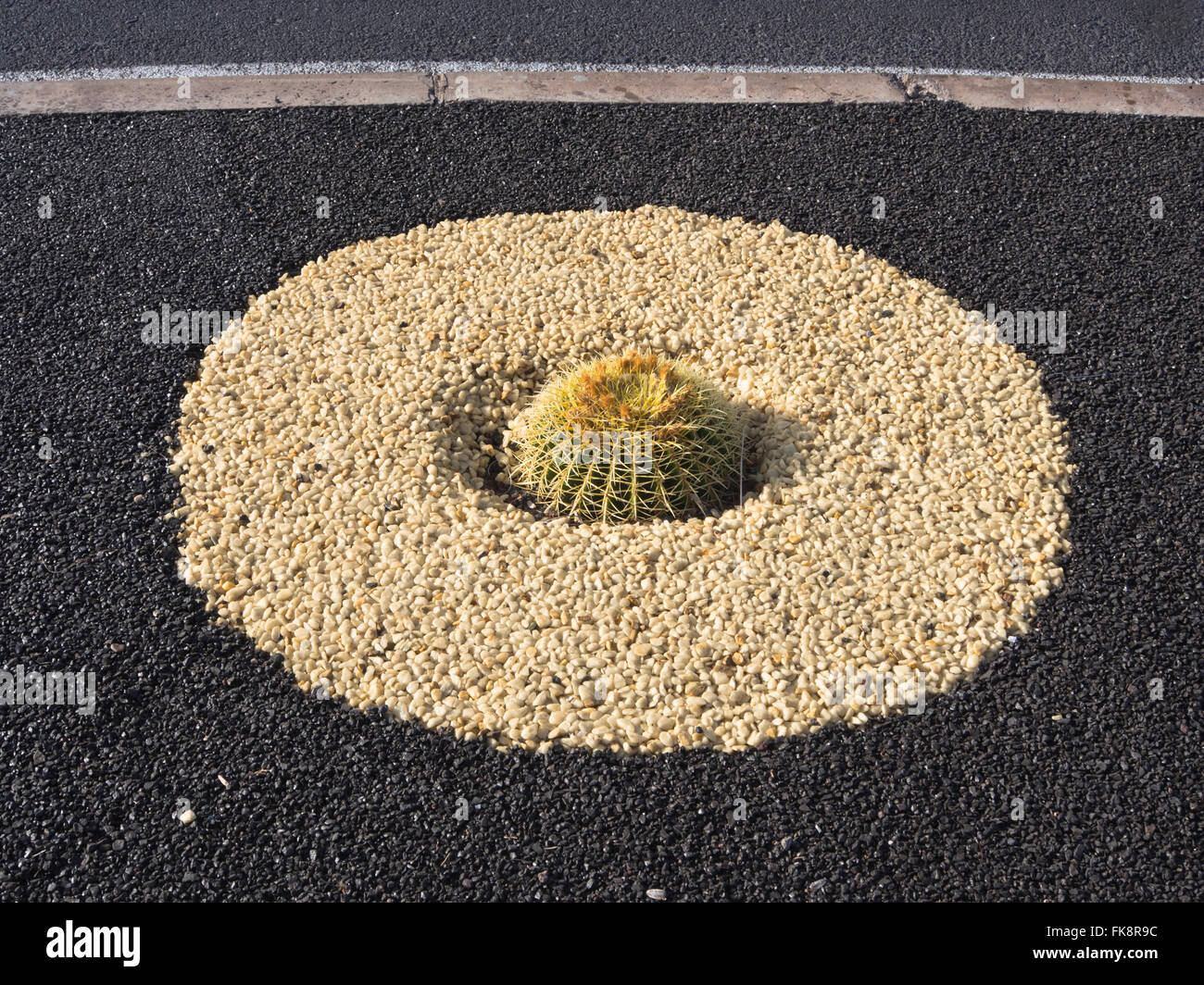 Cactus planted in  lava gravel can be seen along many pavements, promenades and parks in tourist developments in - Stock Image