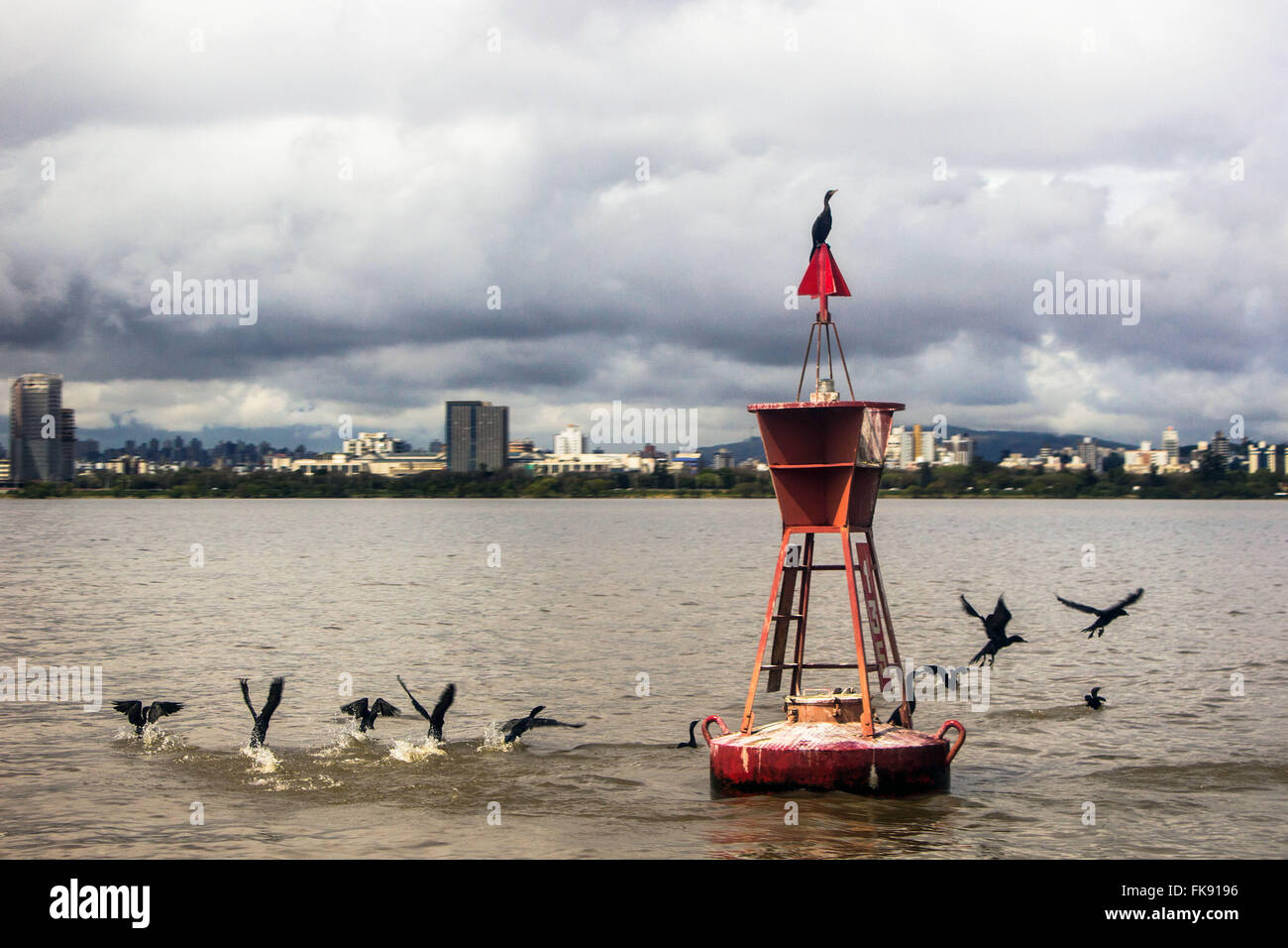 Birds along the Maritime Signal buoy on Lake Guaiba - Stock Image