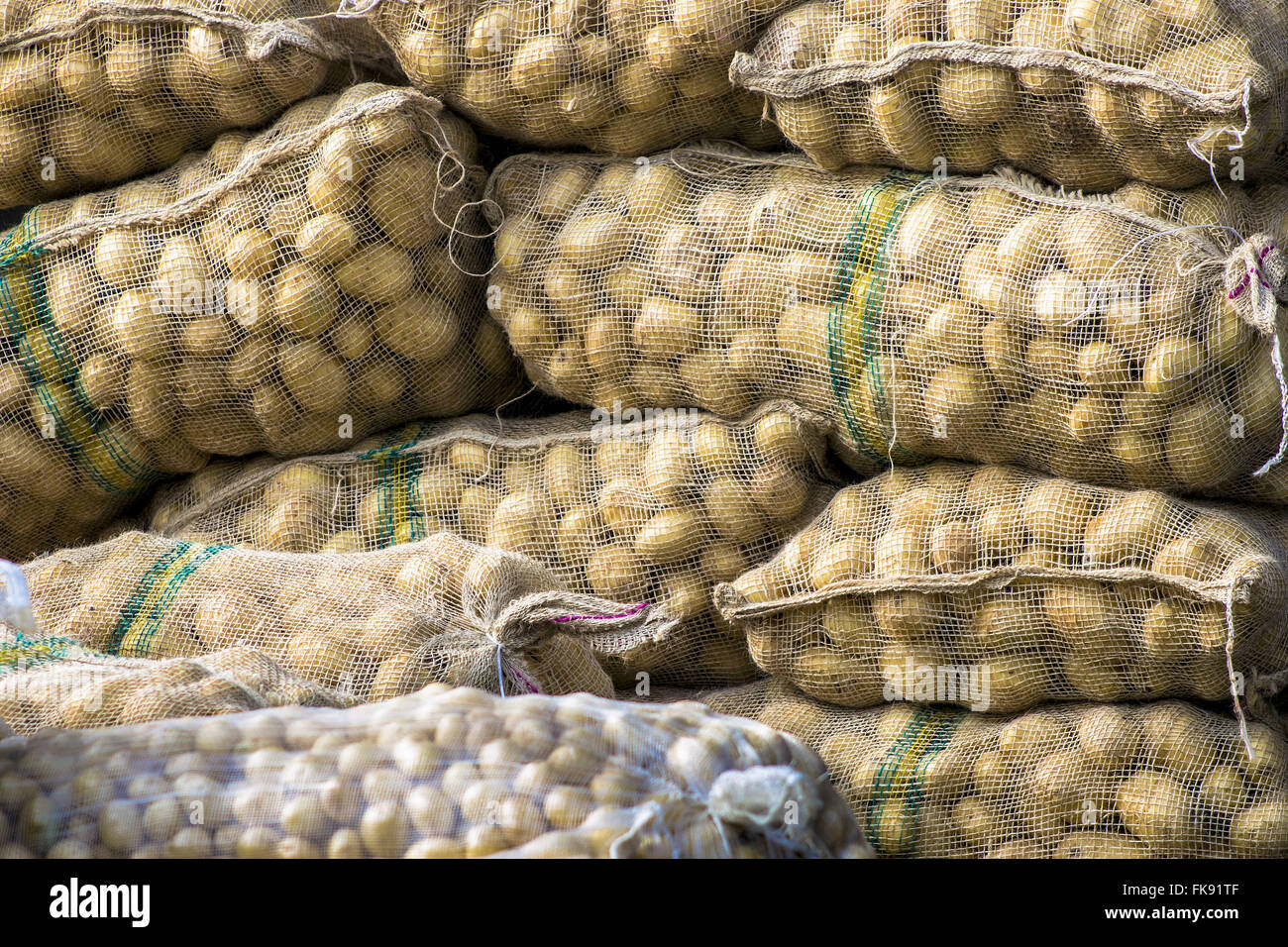 Potato sacks in CEAGESP - General Warehouses of Sao Paulo - Stock Image