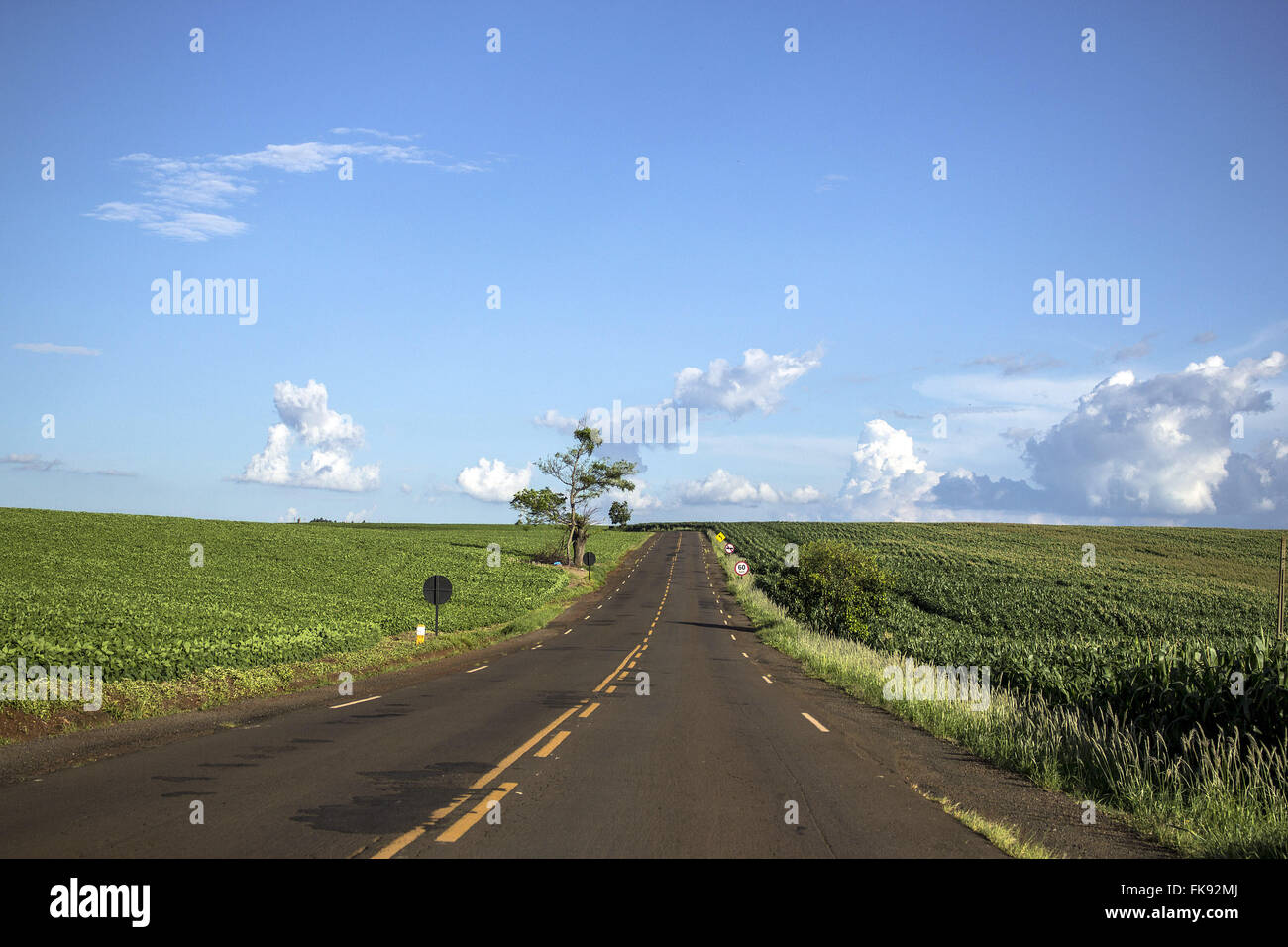 PR-218 State Highway Augustine Ducci - Stock Image
