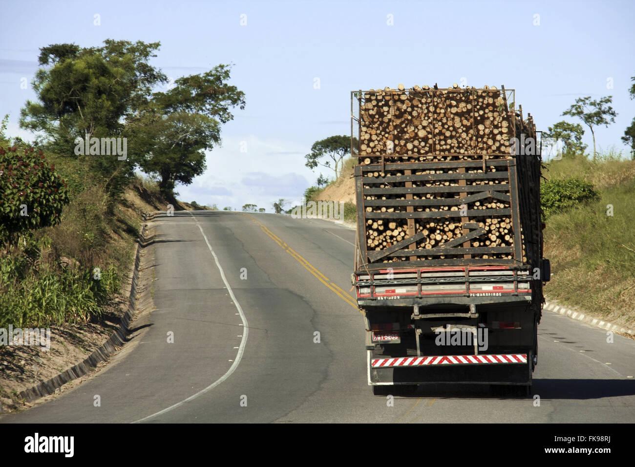Truck carrying eucalyptus in highway RJ-224 - the municipality of Sao Francisco de Itabapoana - RJ - Stock Image