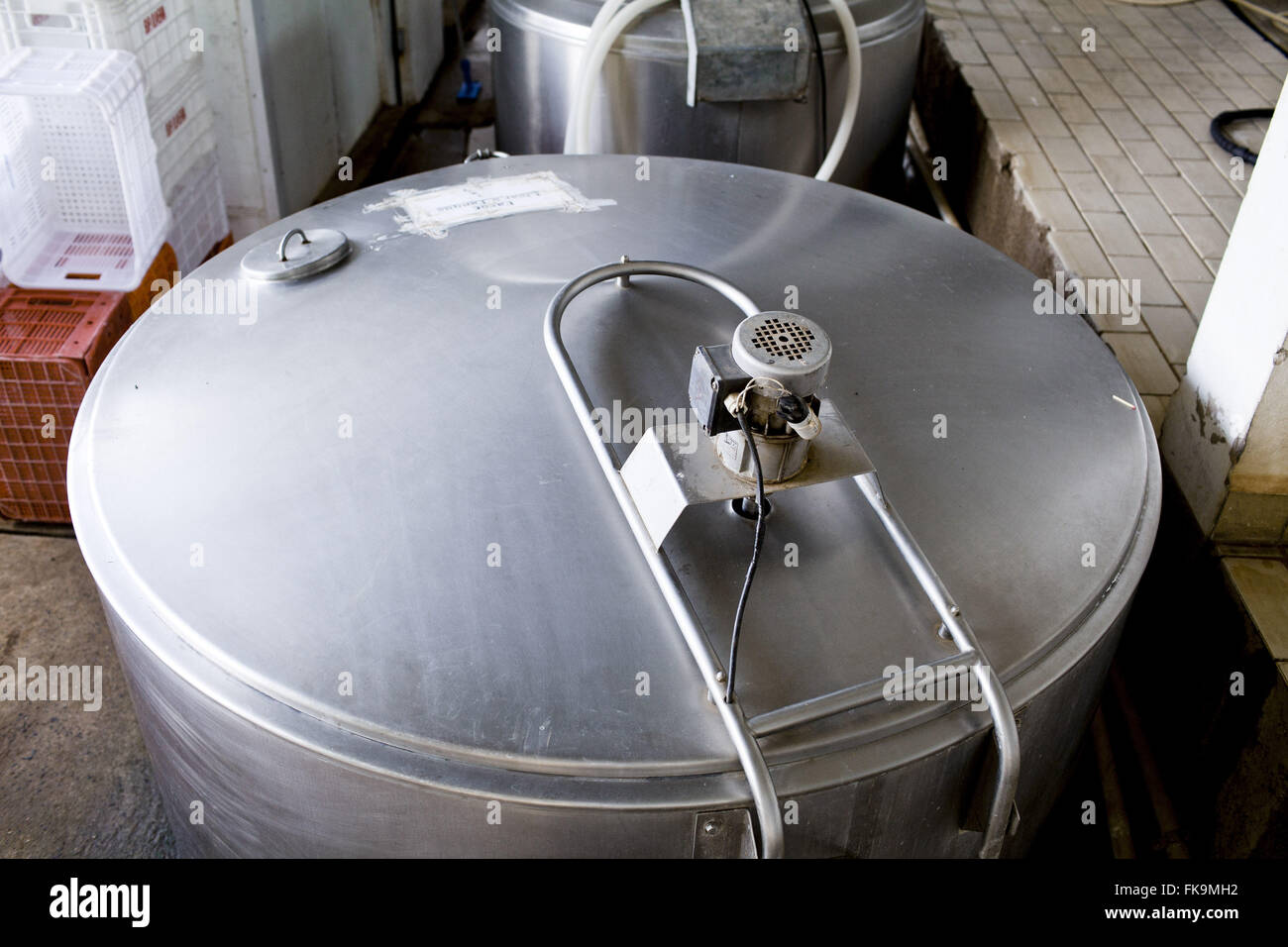 Dairy - cheese production bufala in rural municipality - Stock Image