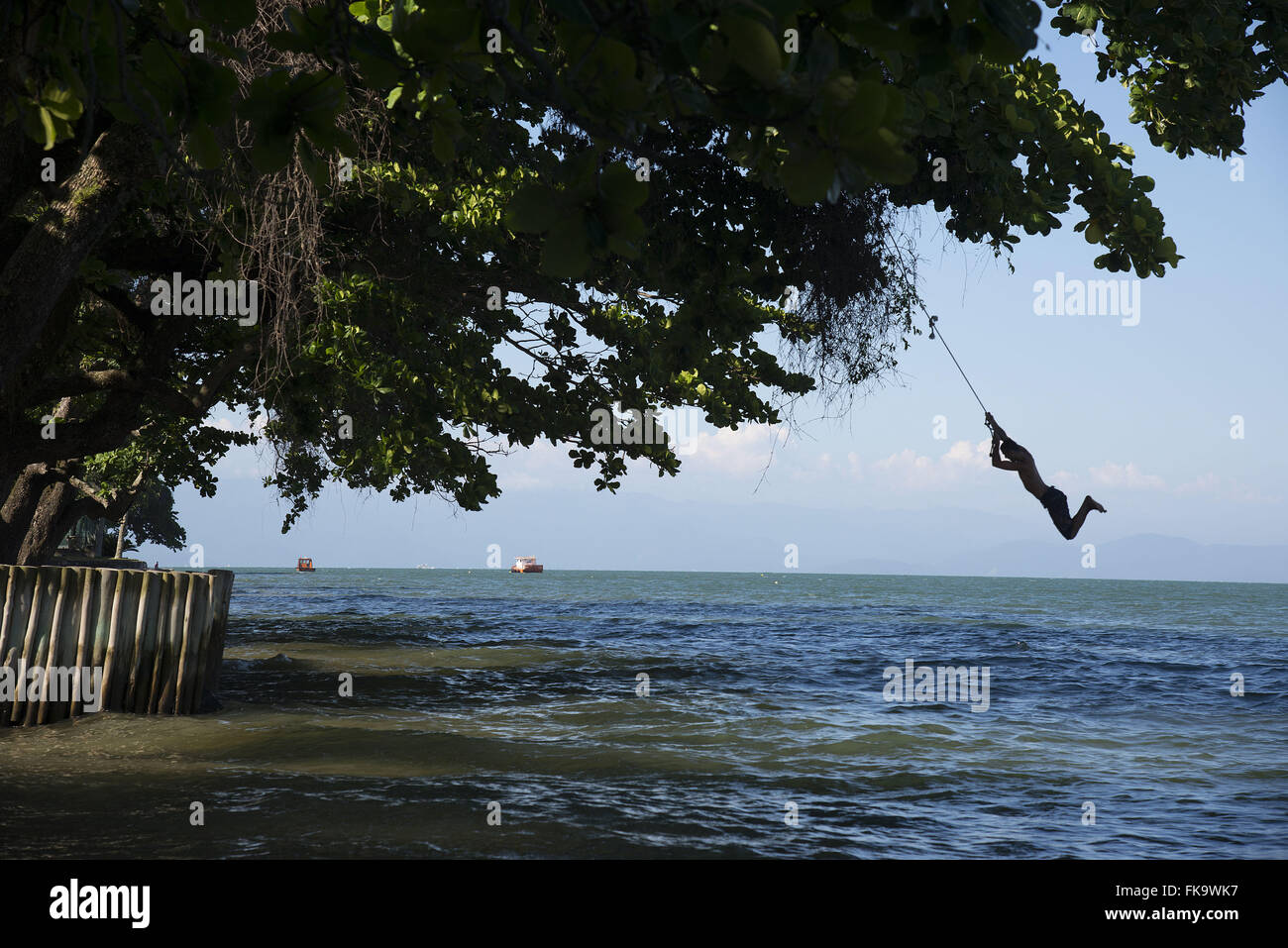 Young playing in the sea with swing rope tied in a tree - Stock Image