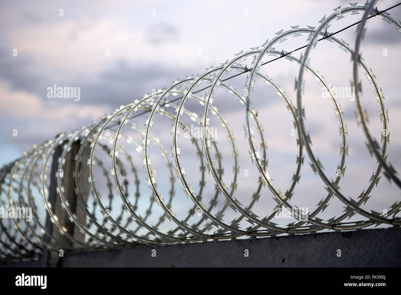 Barbed Stock Photos & Barbed Stock Images - Page 3 - Alamy