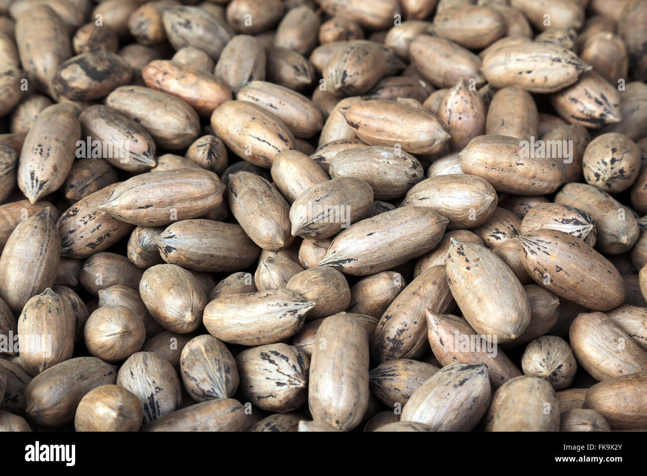 Pecan or pecan sale on warehouse in cereal area of Brás - center - Stock Image