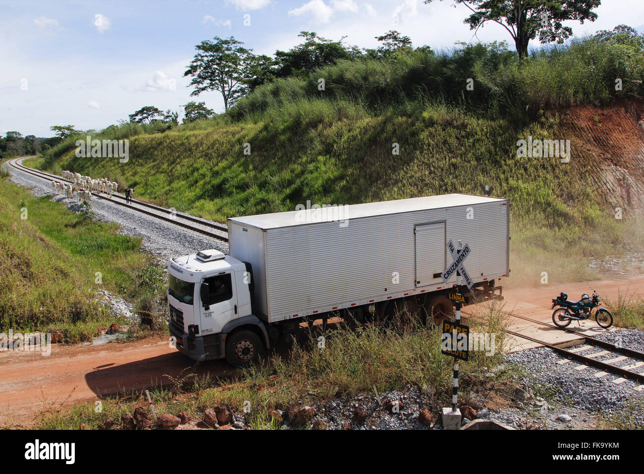 Truck crossing intersection and cattle on the tracks of the North-South Railway Abandoned - Stock Image