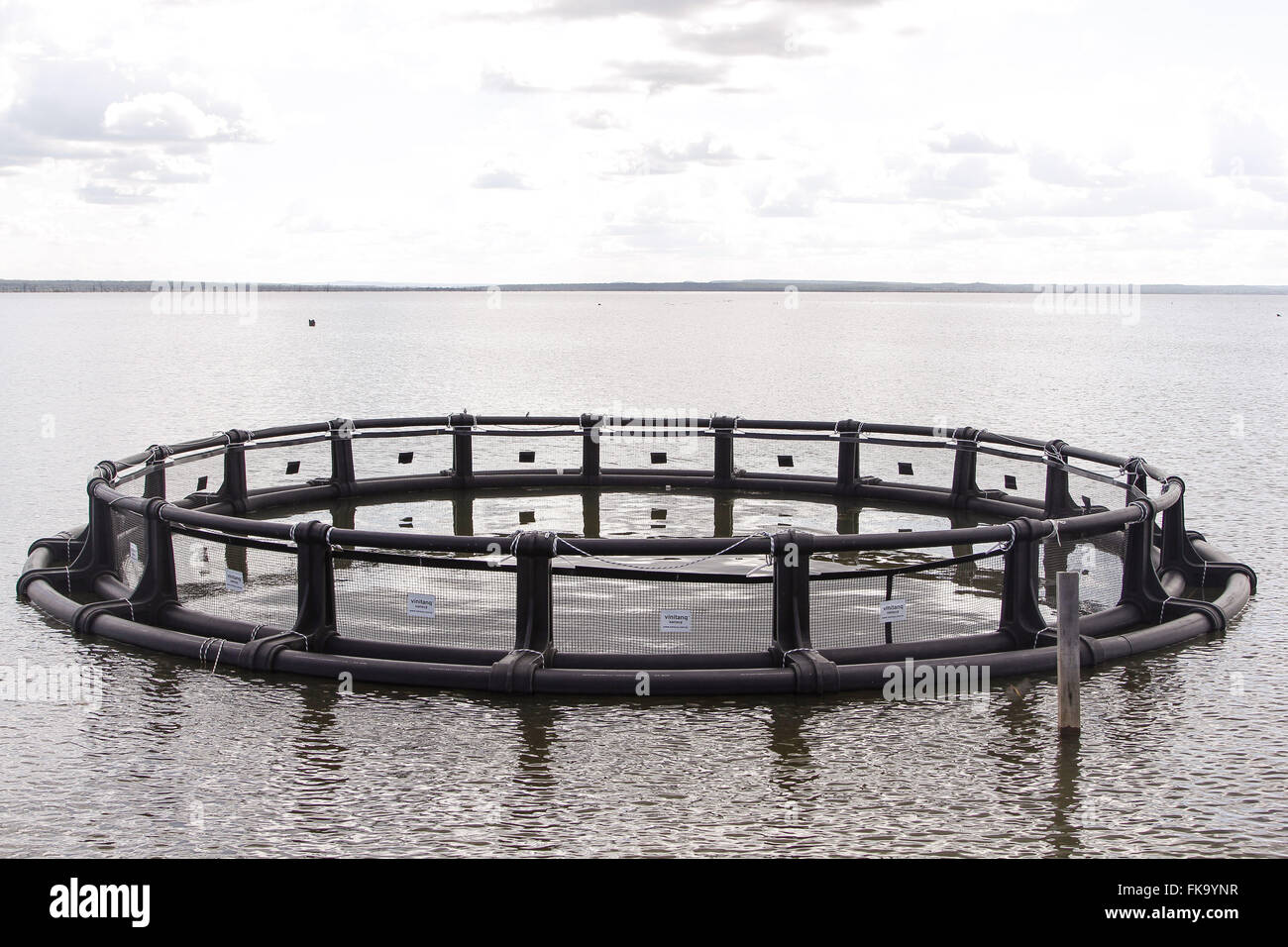 Fish Farming Stock Photos & Fish Farming Stock Images - Alamy