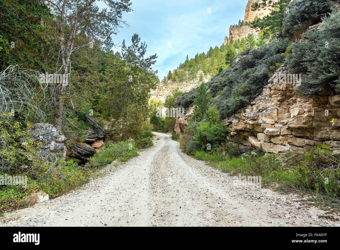 Road through Crazy Woman Canyon near Buffalo, Wyoming - Stock Image