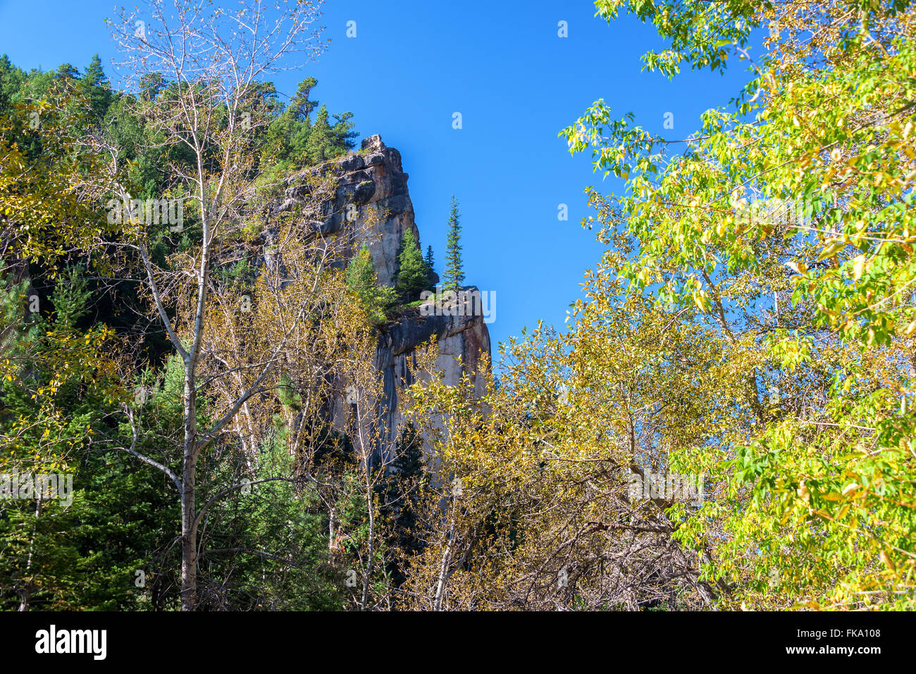 View of South Piney Canyon in Story, Wyoming - Stock Image
