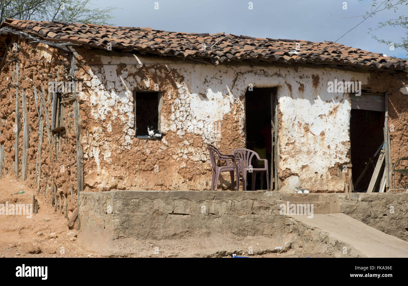 House of cob wall - typical dwelling of the savanna in Pernambuco backlands - Stock Image